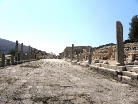 colonade: The main street of the ancient city of Patara paved with large stone slabs and partially preserved colonnade