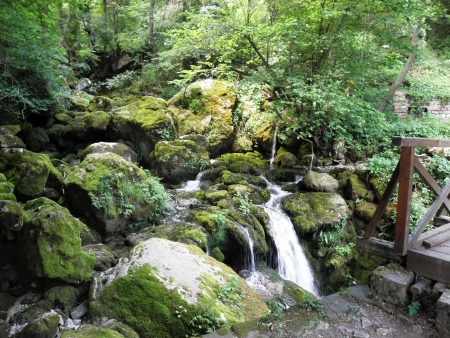 lussureggiante: Rigoglioso ruscello di montagna scendendo dalla parte pi� alta della montagna Stara planina