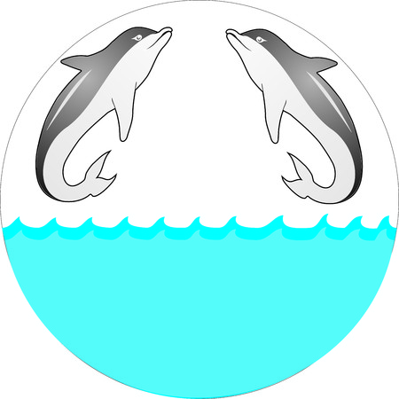 elipse: two dolphins that life in sea .