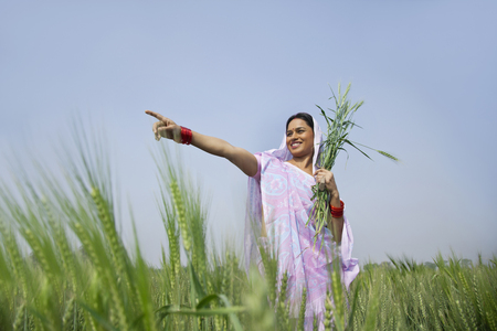 Low angle view of happy Indian female farm worker pointing at something