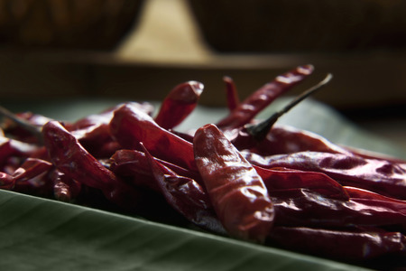 Red Chilli Stok Fotoğraf