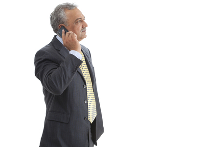 three persons only: Mature businessman on phone call Stock Photo