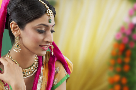 toothy: Close-up of a beautiful bride