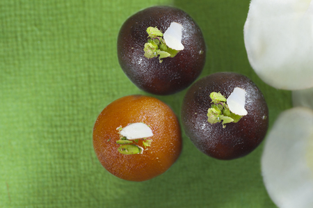 Close-up of gulab jamun