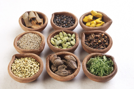 peppercorn: Variety of Indian spices in oil lamps on white background Stock Photo