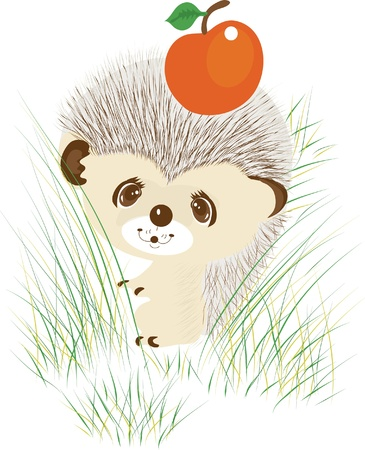 Color illustration of a hedgehog with apple Vector