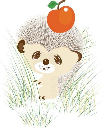 Color illustration of a hedgehog with apple Illustration