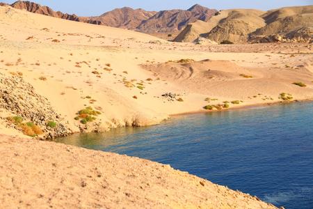 mohammad: Ras Mohammad National park