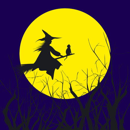 hallucination: Halloween background silhouette of a witch flying in a broom with cat