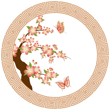 Oriental pink red cherry blossom with butterfly on white background Vector