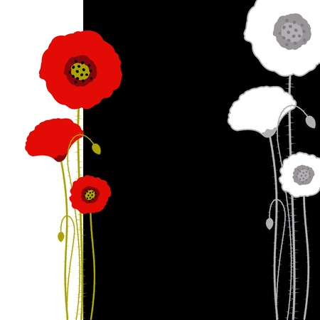 green and black: Abstract red poppy on black and white background
