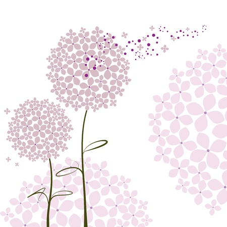 white flower: Abstract springtime purple pink Hydrangea flower Illustration