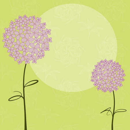 verde y morado: Flor de Hortensia Rosa de primavera abstracta p�rpura sobre fondo verde transparente