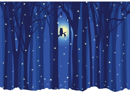moon  owl  silhouette: Winter illustration tree with owl