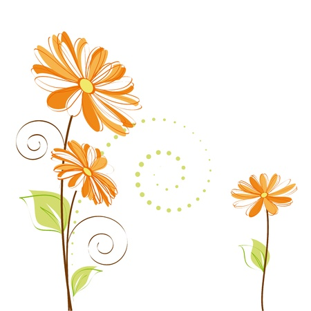 Abstract springtime colorful Daisy flower on white background