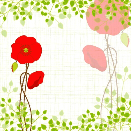Springtime Red Poppy on Green Background