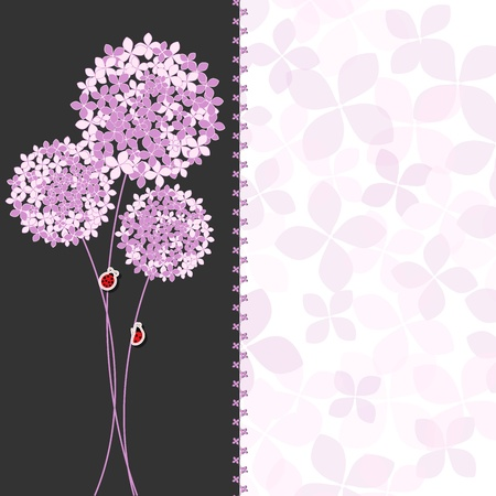 Springtime Purple Pink Hydrangea Flower Greeting Card on Colorful Background Çizim