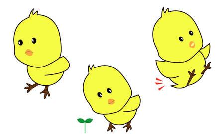 baby Chicken Illustration
