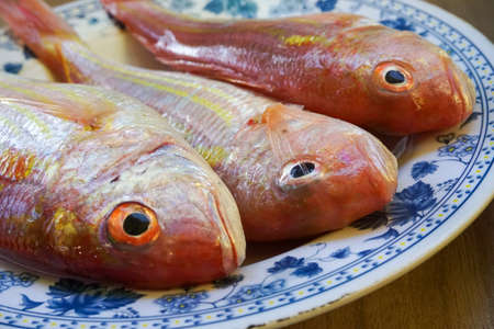 Close up of fish's head on the plate. Focus on the red eye. Raw fish ready to be cooked. Suitable for cooking concept.