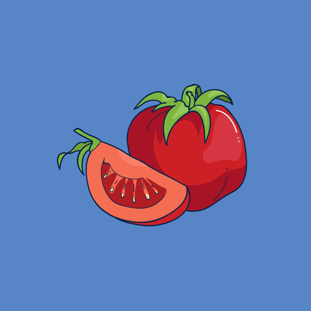 cellulose: Cartoon-style tomato on blue background. Cute vector illustration. Illustration
