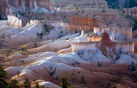 most: Bryce Canyon hoodoos in the first rays of sun, Utah