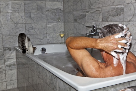bathing man: man bathing and cat strolling around the bath tube Stock Photo