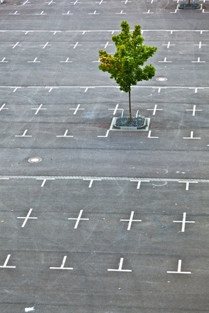 parking space: marked parking lot without cars with crosses Stock Photo