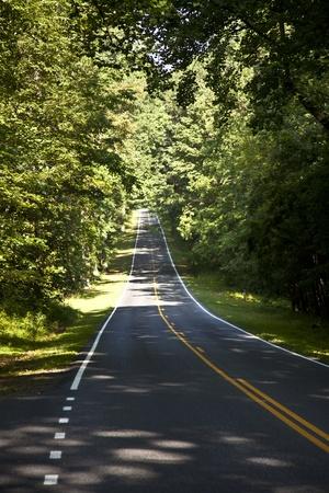 mediaan: Prachtige schilderachtige land weg curven door Shenandoah National Park.