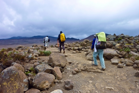 people climbing the Mount Kilimanjaro, the highest mountain in Africa (5892m) photo
