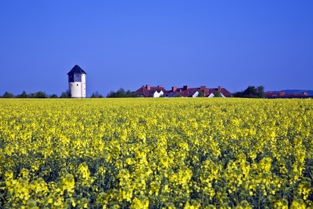 lowlands: water tower in beautiful landscape with blue sky
