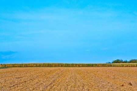 ber: Blick über Felder