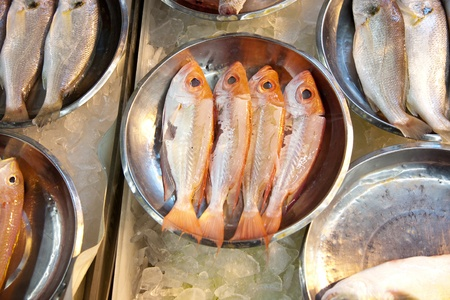 whole fresh fishes are offered in the fish market in asia Stock Photo - 9301056