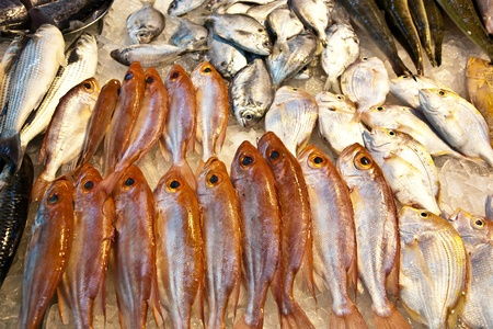 whole fresh fishes are offered in the fish market in asia Stock Photo - 9301652