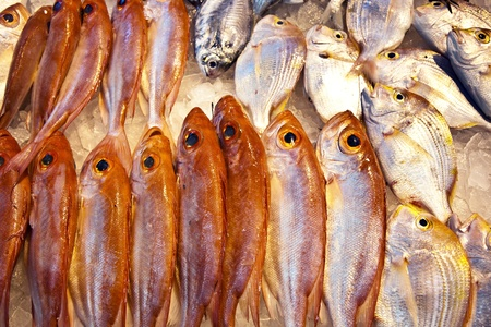 whole fresh fishes are offered in the fish market in asia Stock Photo - 9302045