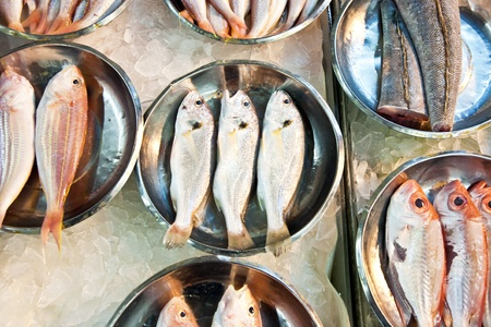 whole fresh fishes are offered in the fish market in asia Stock Photo - 9300773