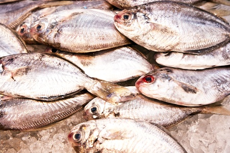 whole fresh fishes are offered in the fish market in asia Stock Photo - 9301583