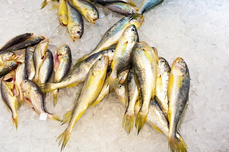 whole fresh fishes are offered in the fish market in asia Stock Photo - 9300562