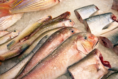 whole fresh fishes are offered in the fish market in asia Stock Photo - 13510673