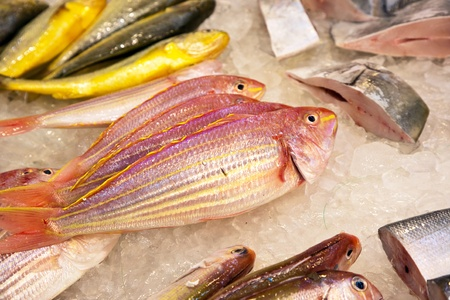 whole fresh fishes are offered in the fish market in asia Stock Photo - 9300641