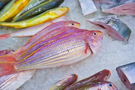 whole fresh fishes are offered in the fish market in asia Stock Photo - 13510674