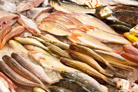 whole fresh fishes are offered in the fish market in asia Stock Photo - 9301020