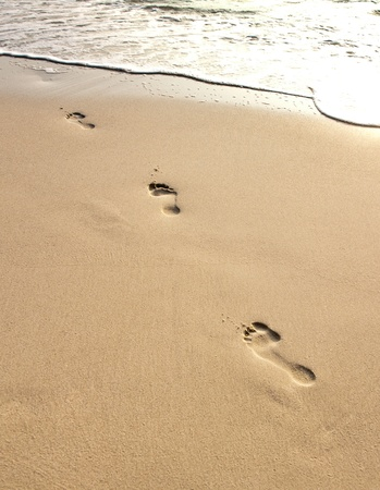 adult footprint: human adult footprint in the fine sand at the beach
