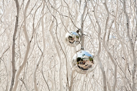white painted branches give a harmonic background with chrismas tree balls and mirroring photo