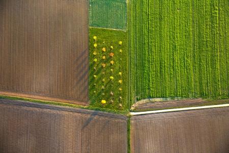 aerial: paesaggio rurale con acri da pallone ad aria calda a Francoforte