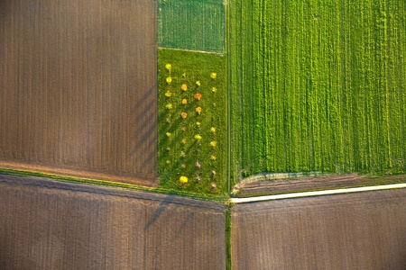 aerial: rural landscape with acre from hot air balloon in Frankfurt
