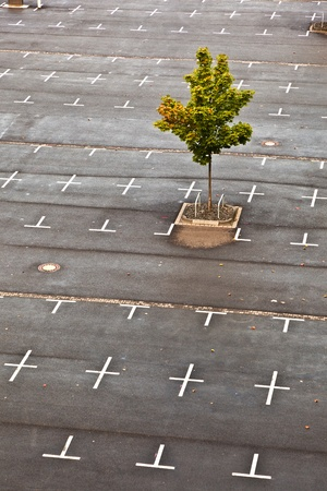 marked parking lot without cars with crosses photo