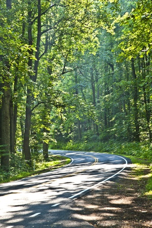 median: Beautiful scenic country road curves through Shenandoah  National Park.