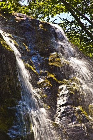 beautifl natural Waterfall in national park photo