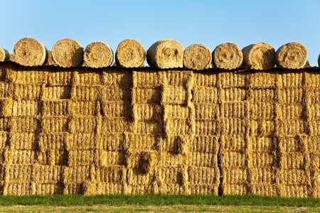 bale of straw in automn in intensive colors photo