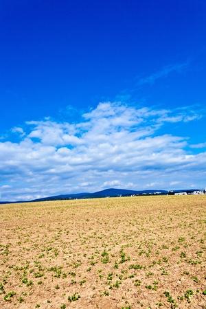 settlement near the edge of the beautiful field Stock Photo - 9379468